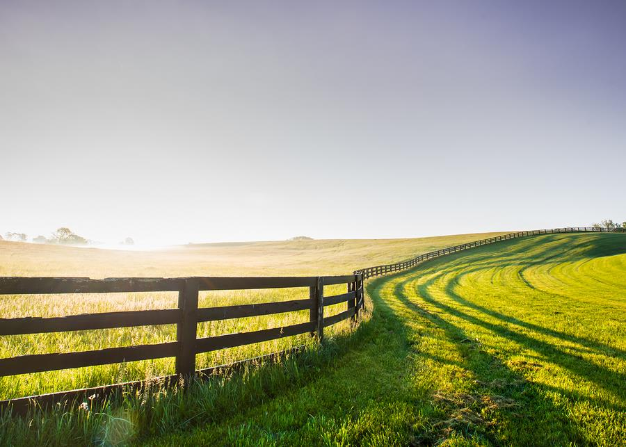 Get to Know the Kentucky Bluegrass Region