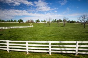 WHITE FENCE AND FIELDS