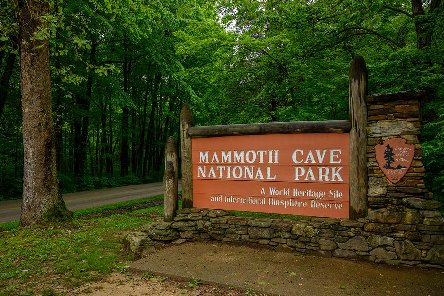 5 Things you  Must See at Mammoth Cave National Park